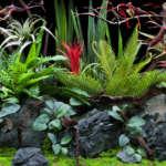 Deep Flora