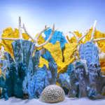 Luscia Reef